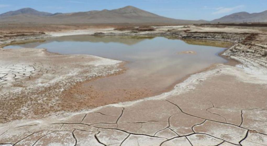 Las primeras lluvias en 500 años devastan a los microbios del desierto de Atacama