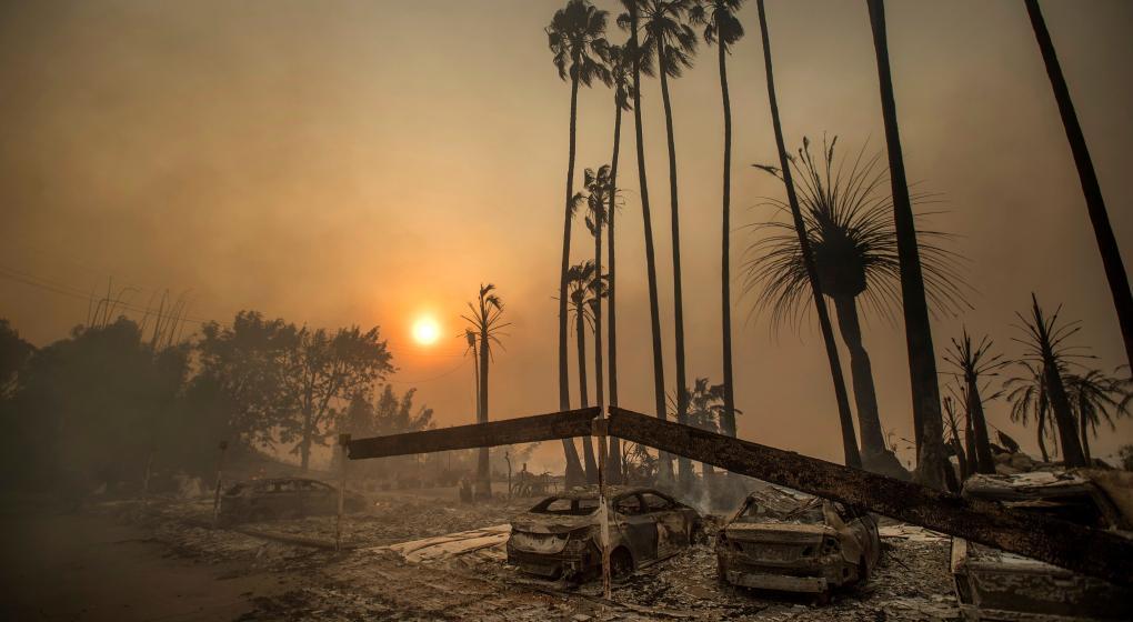 Feroces incendios en California: Trump declaró el estado de emergencia