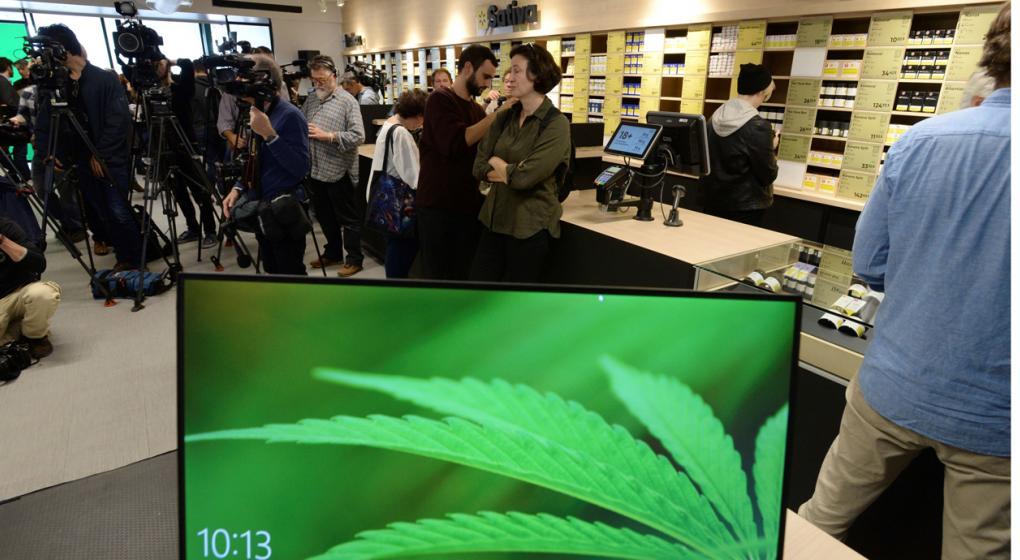 Canadá se dispone a legalizar la marihuana recreativa