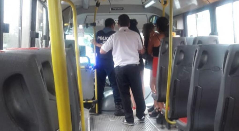 Detuvieron a un chofer de colectivo por haber robado un celular a una pasajera
