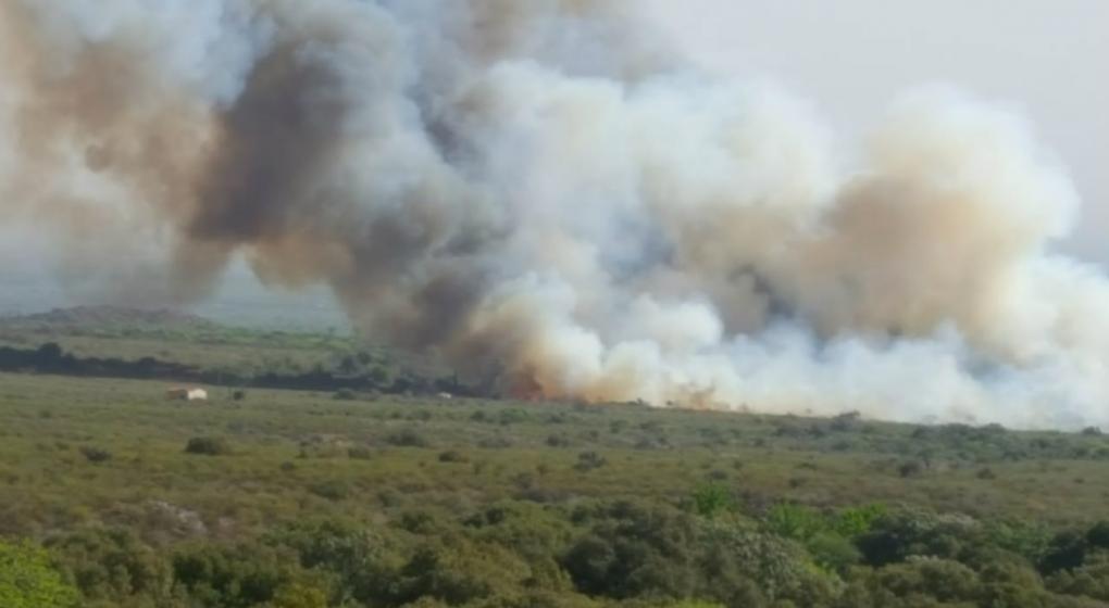 Denuncian que incendios en La Población son intencionales
