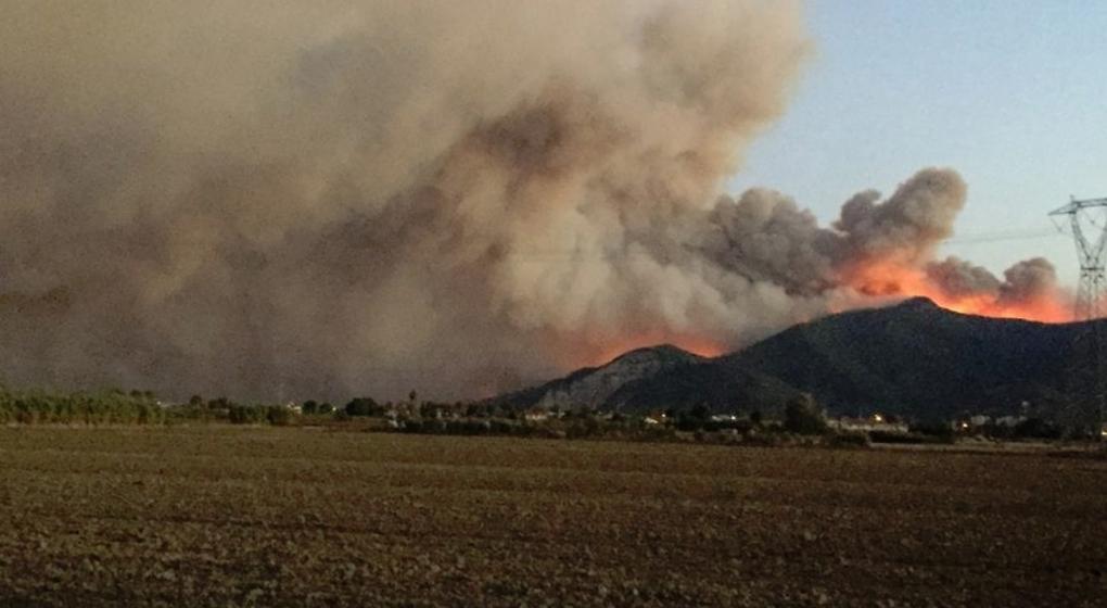 Incendio forestal en Italia: hay 700 evacuados