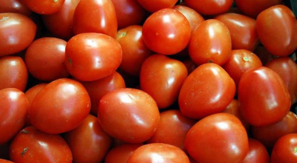 El 80% de la producción de tomate se perdió por el bloqueo de Paraguay