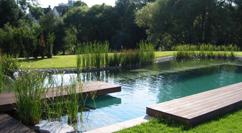 Cómo refrescarse naturalmente: las piscinas ecológicas | Noticias al ...